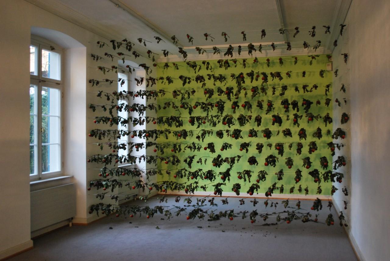 2009/ Kunstlerhause Bregenz , A