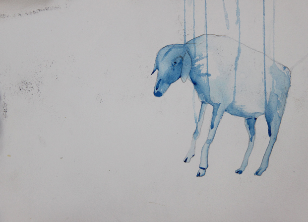 Sheep (2014). Watercolour and ink on paper, 26 x 36 cm.