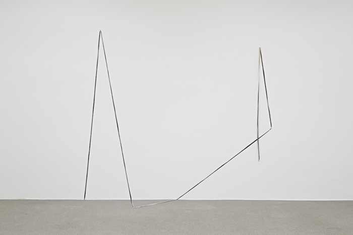 Lynched Line, 2014, Private Collection