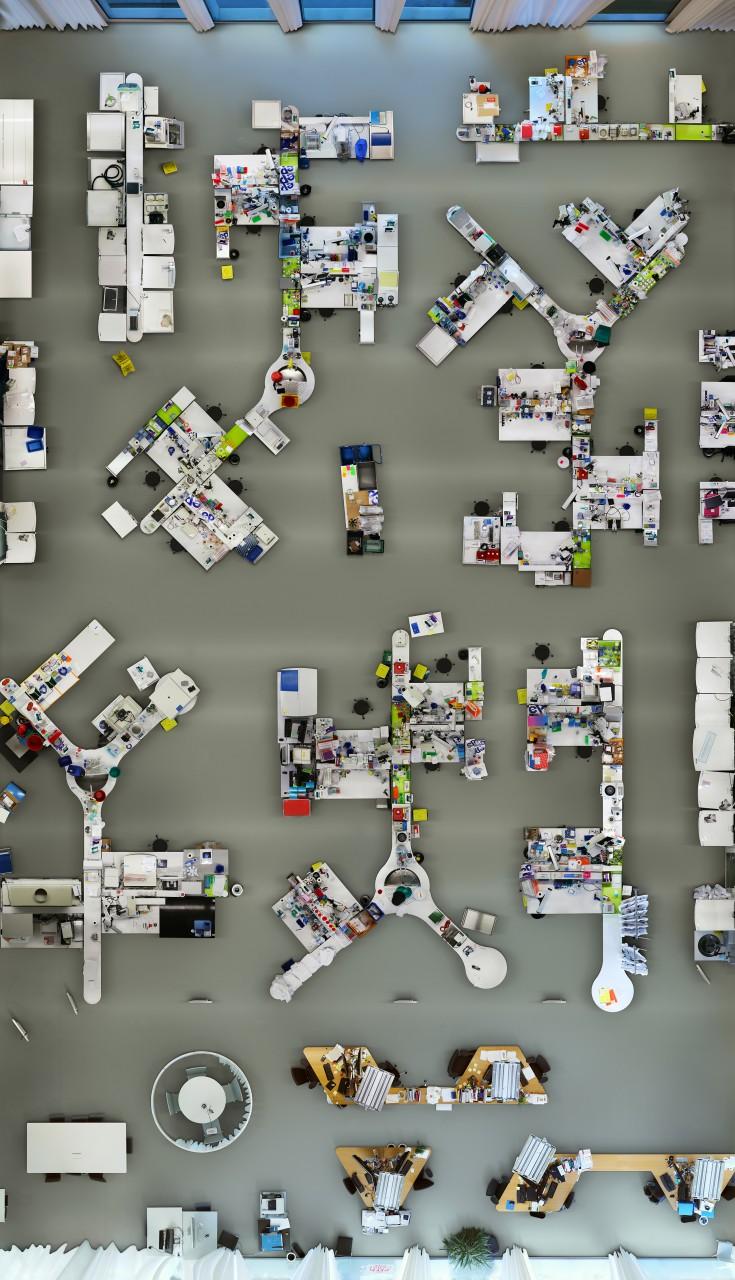 Lab, 261 x 149 cm, 2012/2013