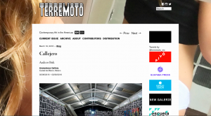 TERREMOTO – CALLEJERO Image