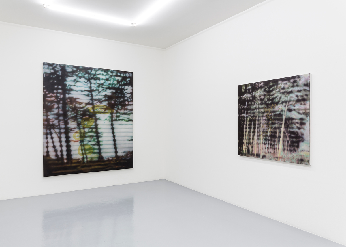"""""""TRANSIENT POETRY"""", solo show at Mai 36 Galerie, Zürich. 2015 ©Photo by Peter Baracchi"""