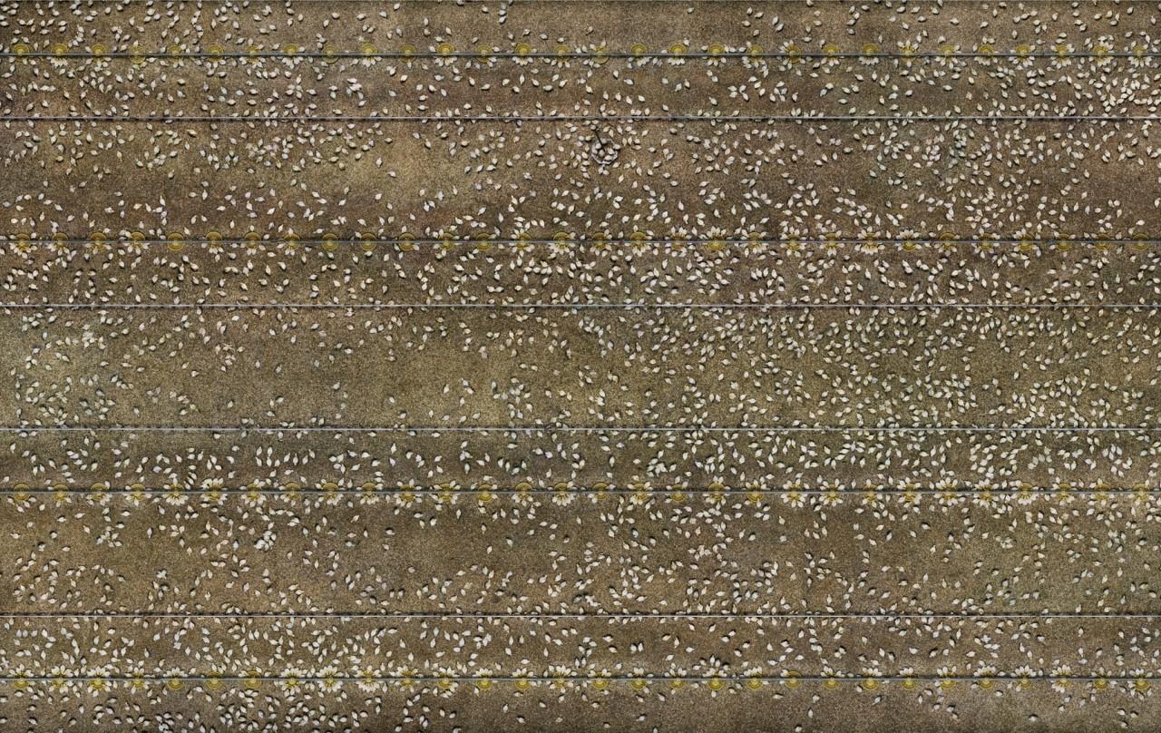 Supervisions - Ohne Titel (Hühnerzucht) | Nordhorn 2004 | Lightjet print |160x 253 cm