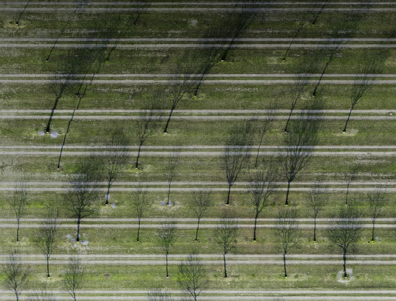 Supervisions - Ohne Titel (Parkplatz) | Düsseldorf 2007 | Lightjet print | 170 x 223 cm