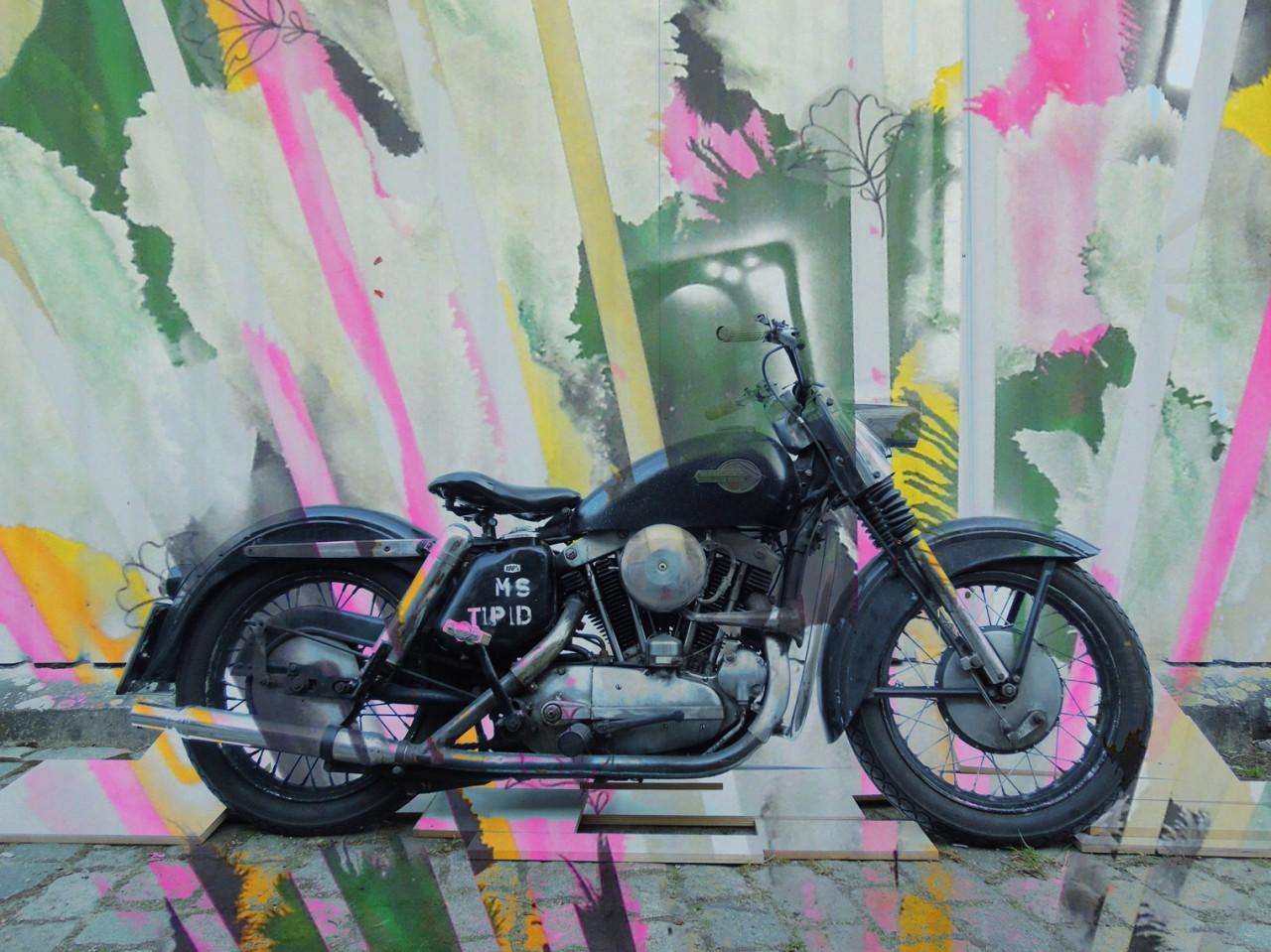 Marcus Sendlinger | Profil Image 25