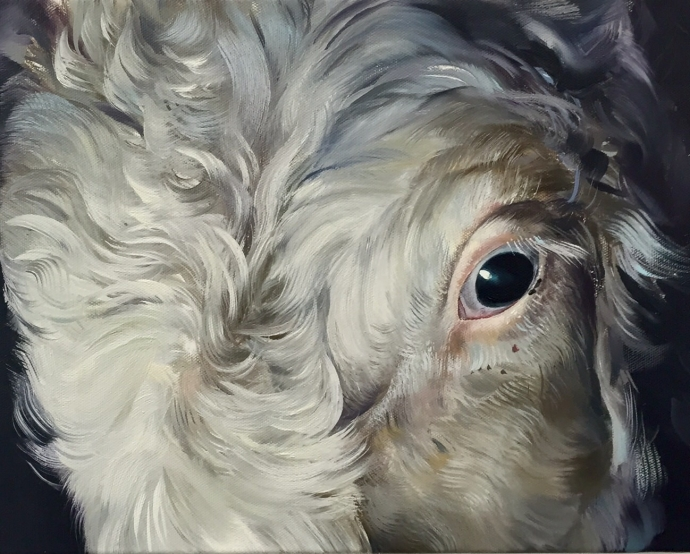 Ox | Oil on canvas 11x14 inches / 28x36 centimeters