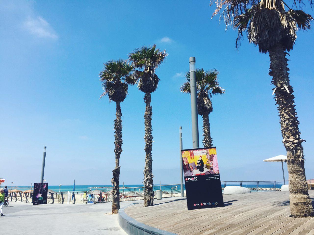 Award Winning Portfolio 2016 (Tel Aviv & Jaffa ports)