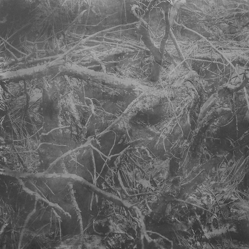 Derwent Art Prize image