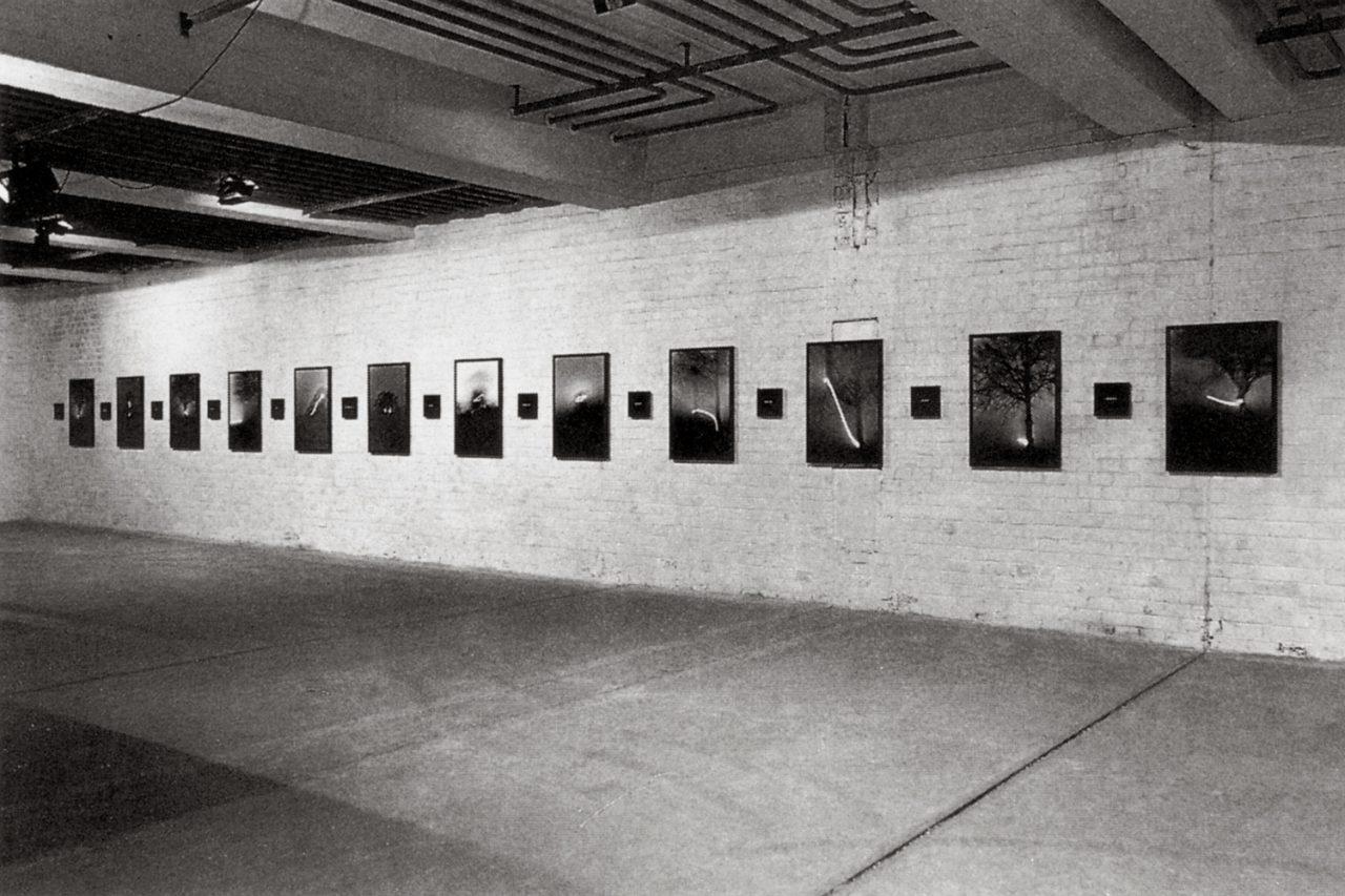 Apocalypse | 1995 | Exhibition View | Galerie Debras-Bical, Bruxelles, Belgium, 1996