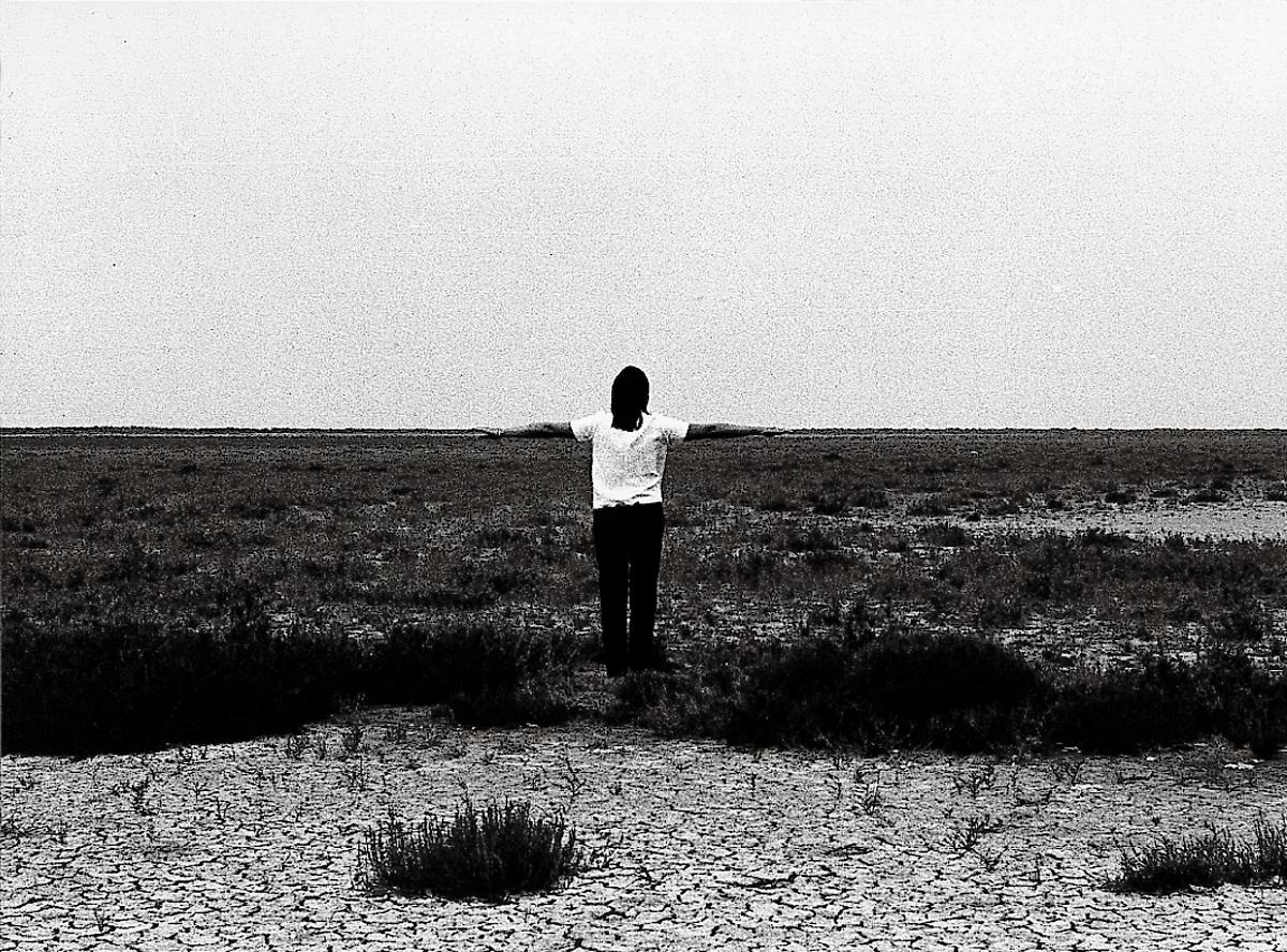 Mimetische Landschaft | 1970 | Silver gelatin print | 110 x 150 cm