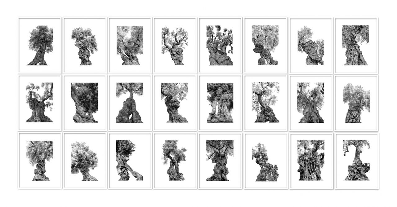 Monumentali, 24 archival inkjet prints on baryta paper, 30 x 40 cm each, edition 3 +2 AP