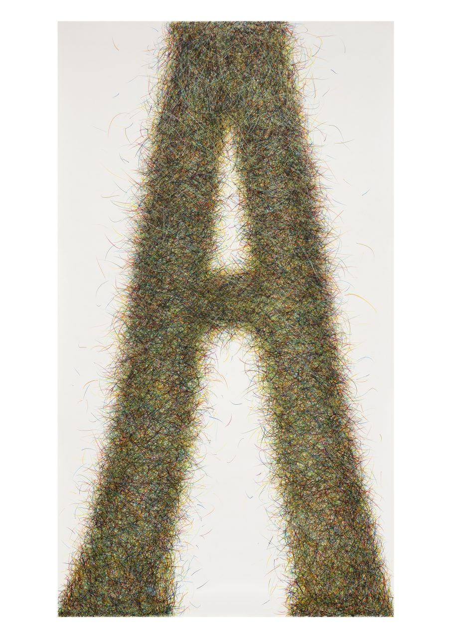 Proxy 1-01, 2015, coloured pencils on paper, 220 x 120 cm, Photo: Bernd Hiepe