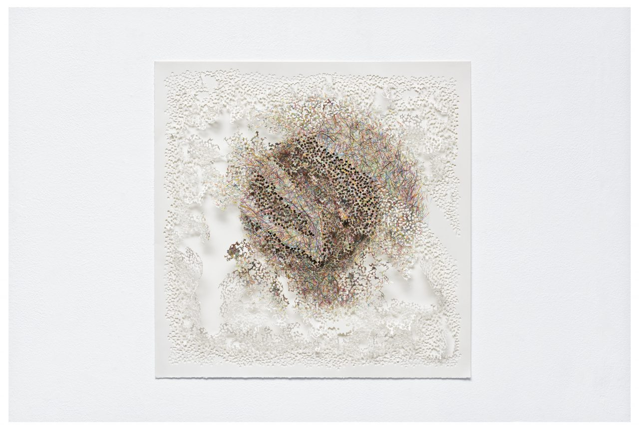 Visi-topia 14, 2014, coloured pencils on paper, perforated, 48 x 49 x 3 cm