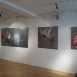 Alexander Karner Profile Images