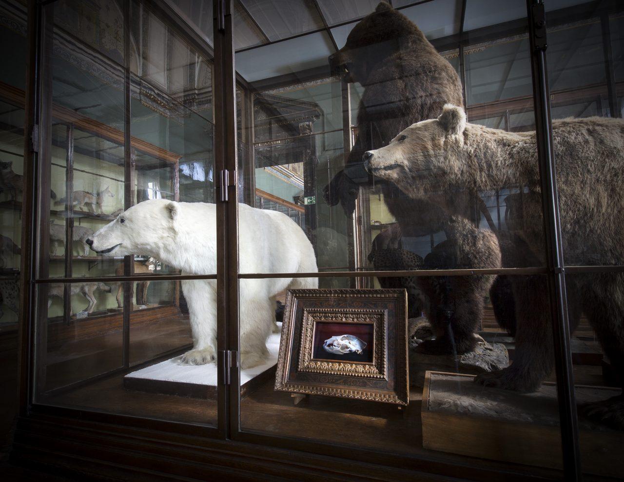 Naturhistorischen Museum Wien