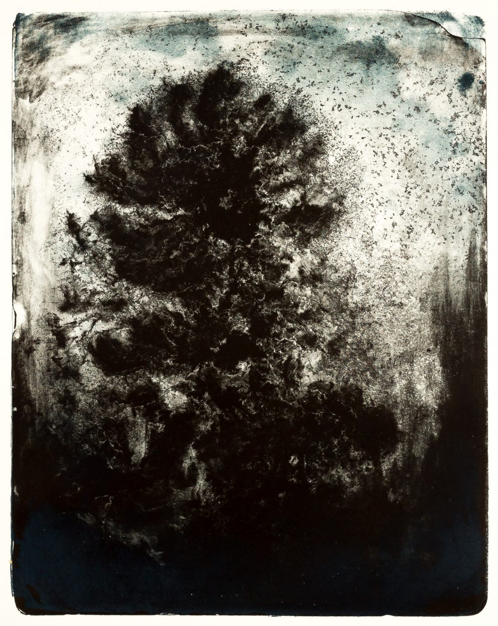 Wald X(N)-XVI, 2016, color lithograph, unique, 50x40 cm