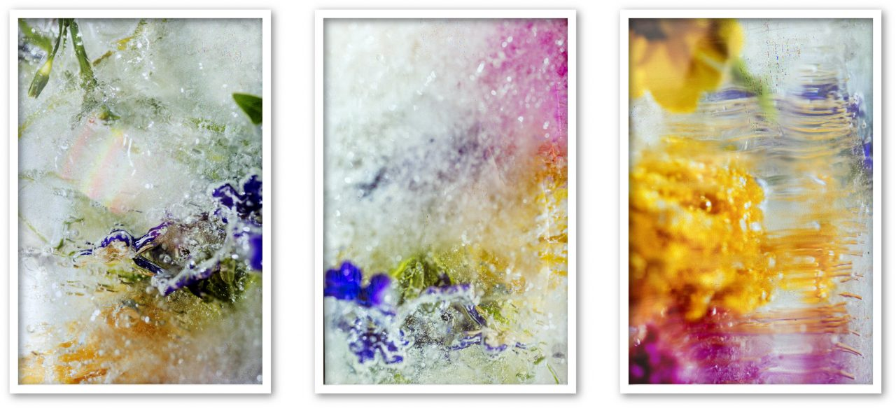 untitled(Stardust), inkjet on archival paper, 50x75cm each, Edition: 5 + 2AP