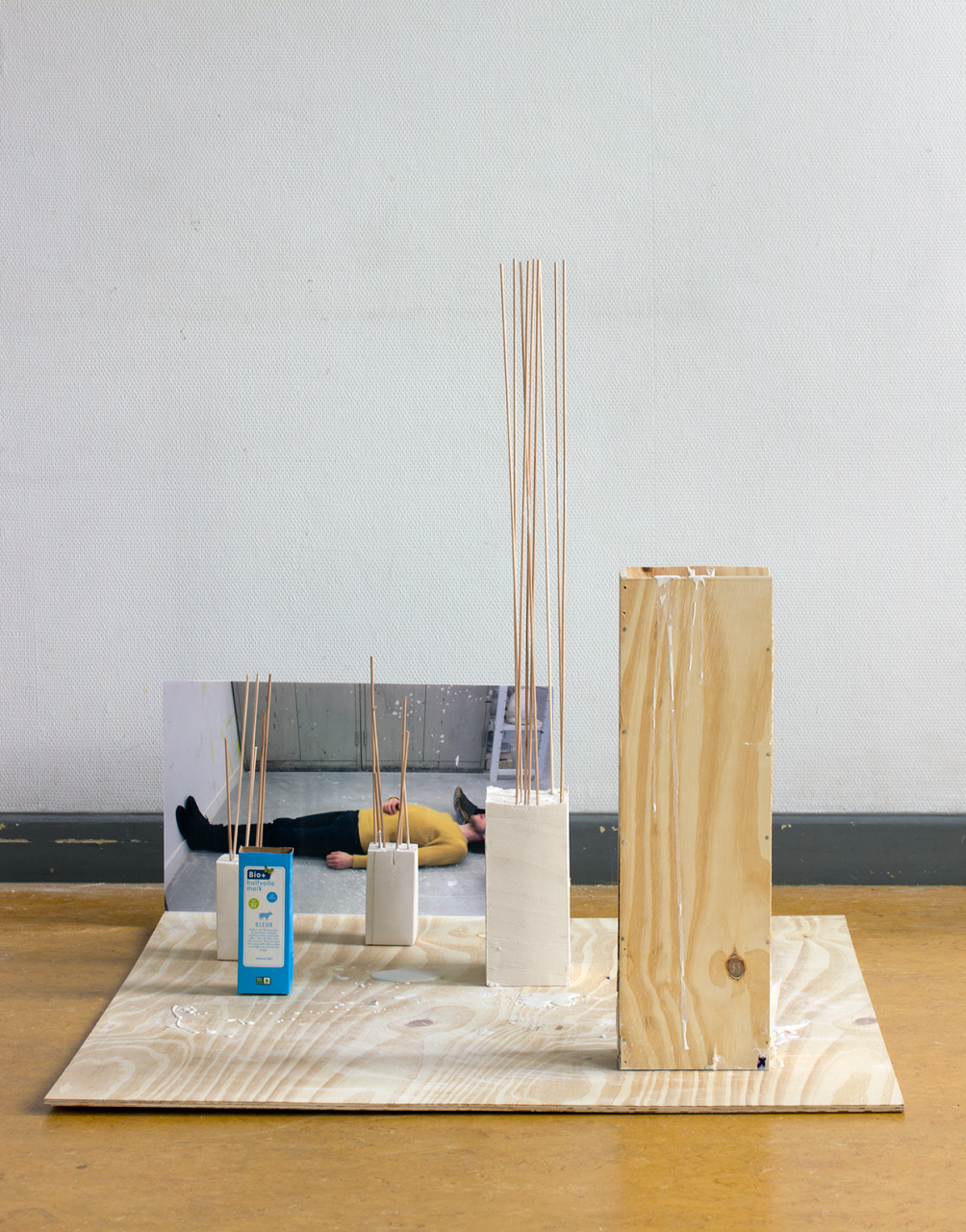 Site construction 2018 - 62 x 130 x 103cm, photograph, foamcore, triplex, plaster, rods, milk carton