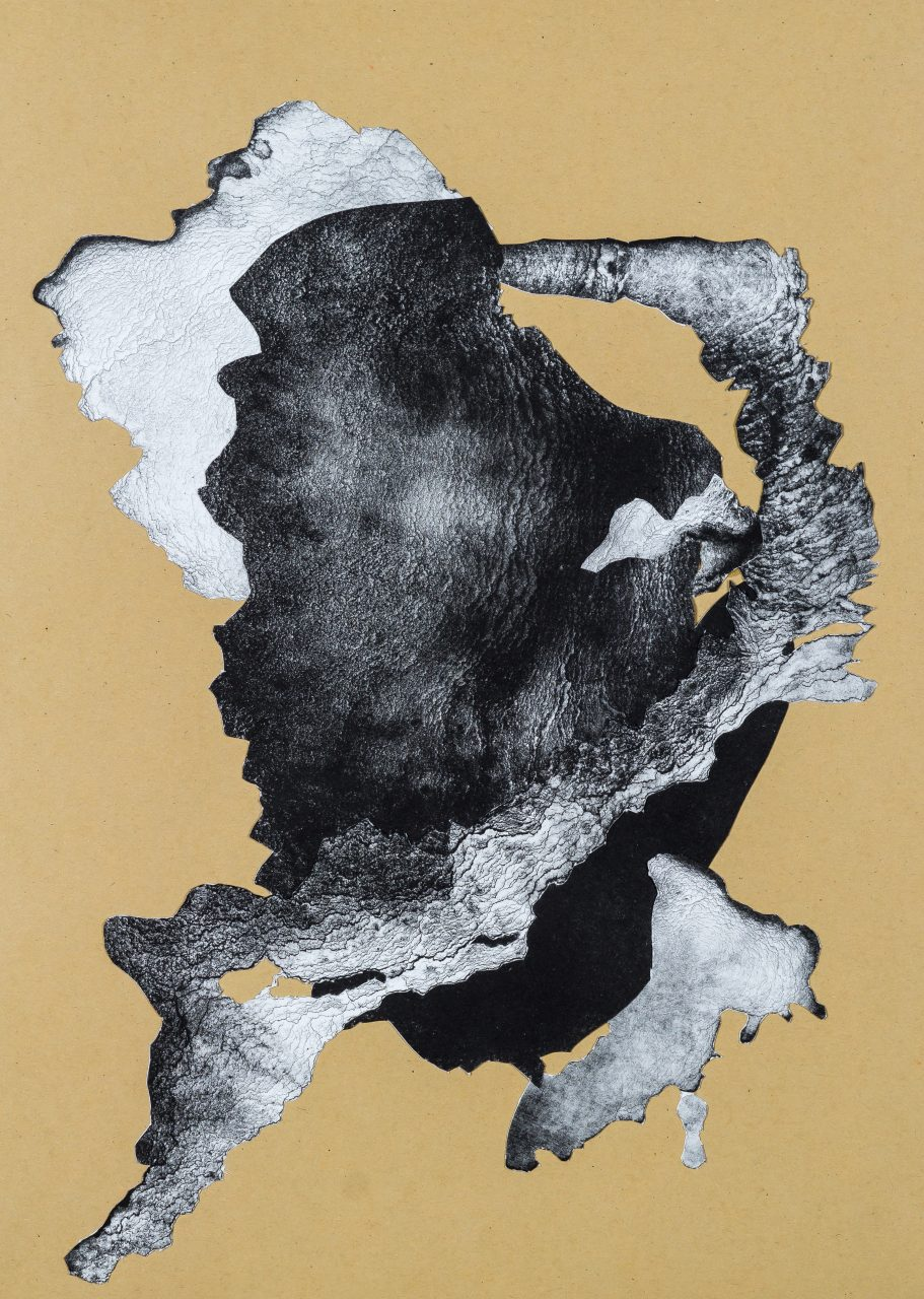 organism (cr)-I, 2018, lithograph collage, unique, 41,5×30 cm