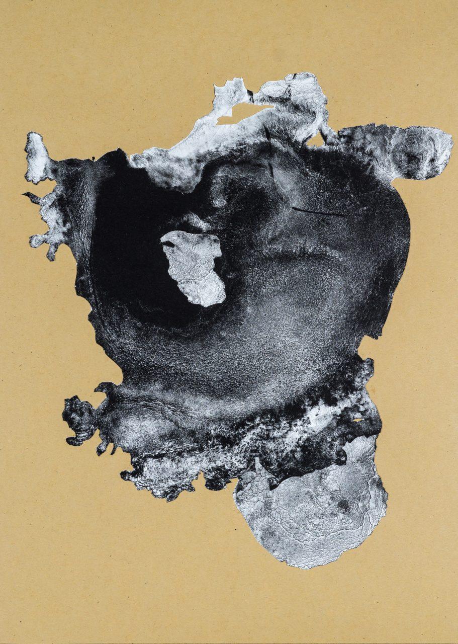 organism (cr)-X, 2018, lithograph collage, unique, 41,5×30 cm