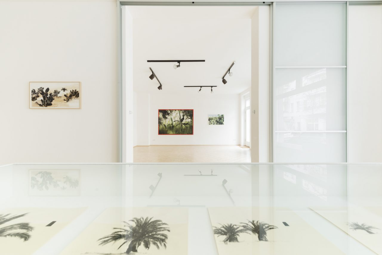 Installation view exhibition