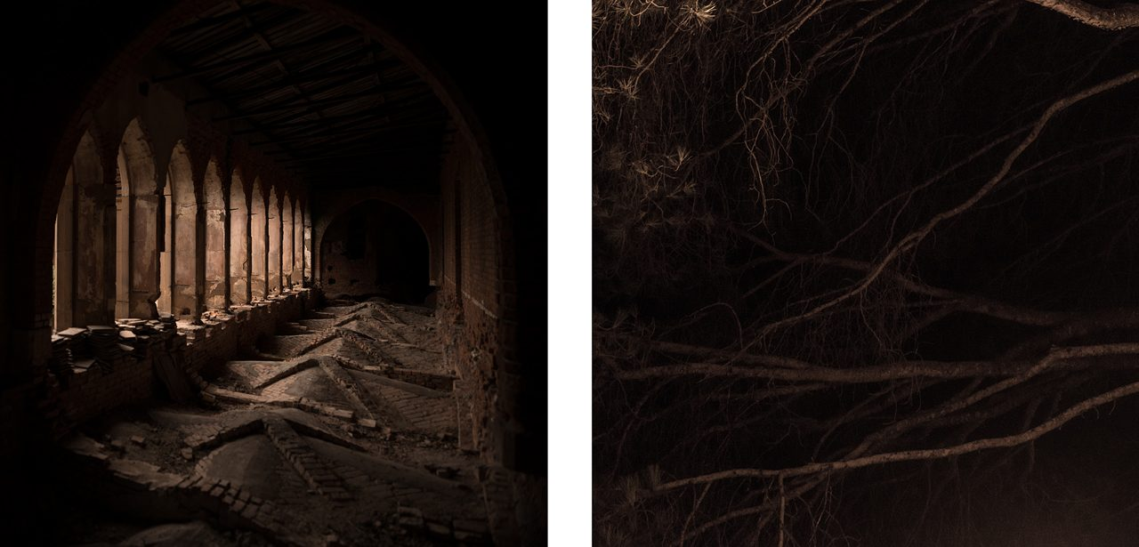 #16 from the series Silence (diptych)
