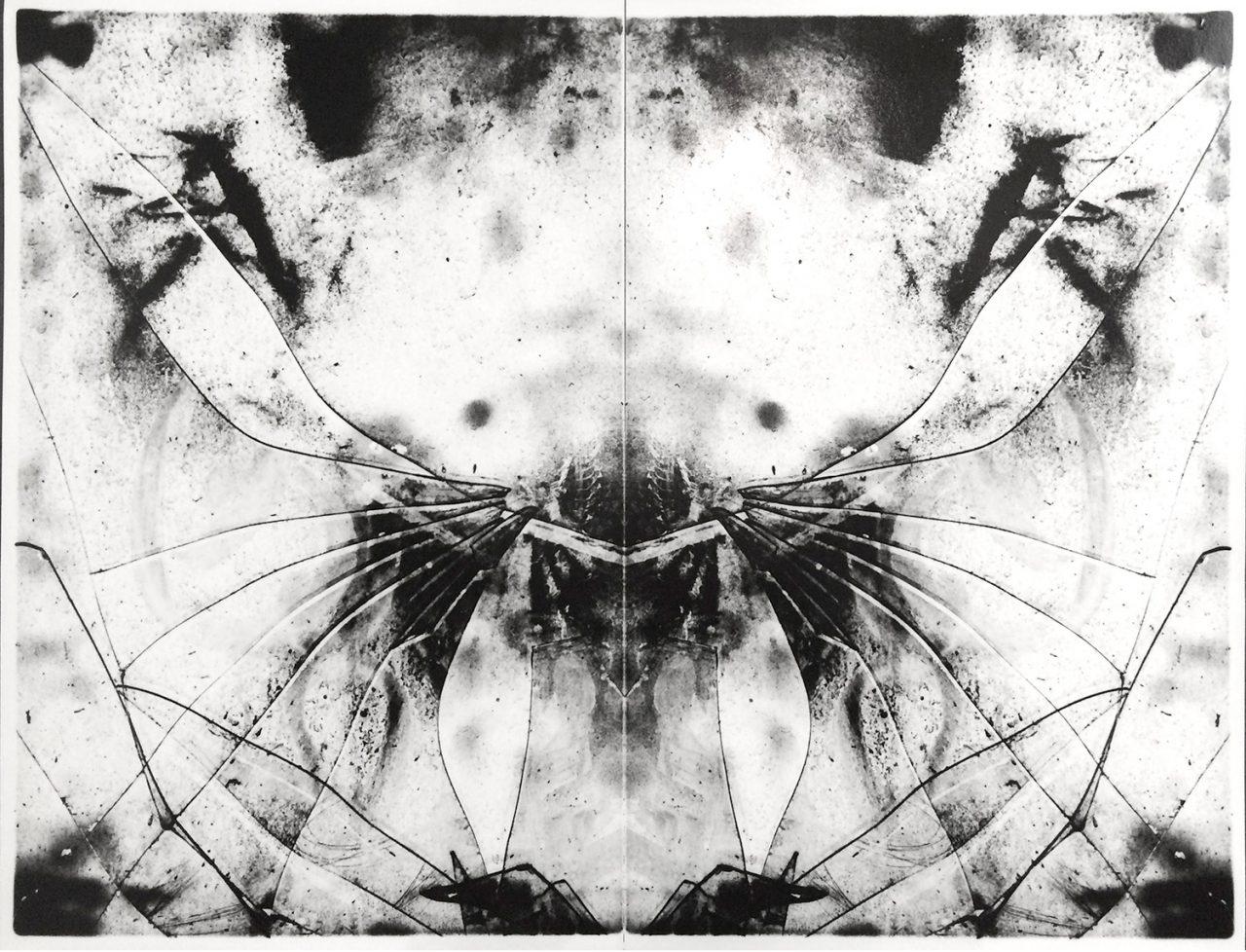 Demonography image