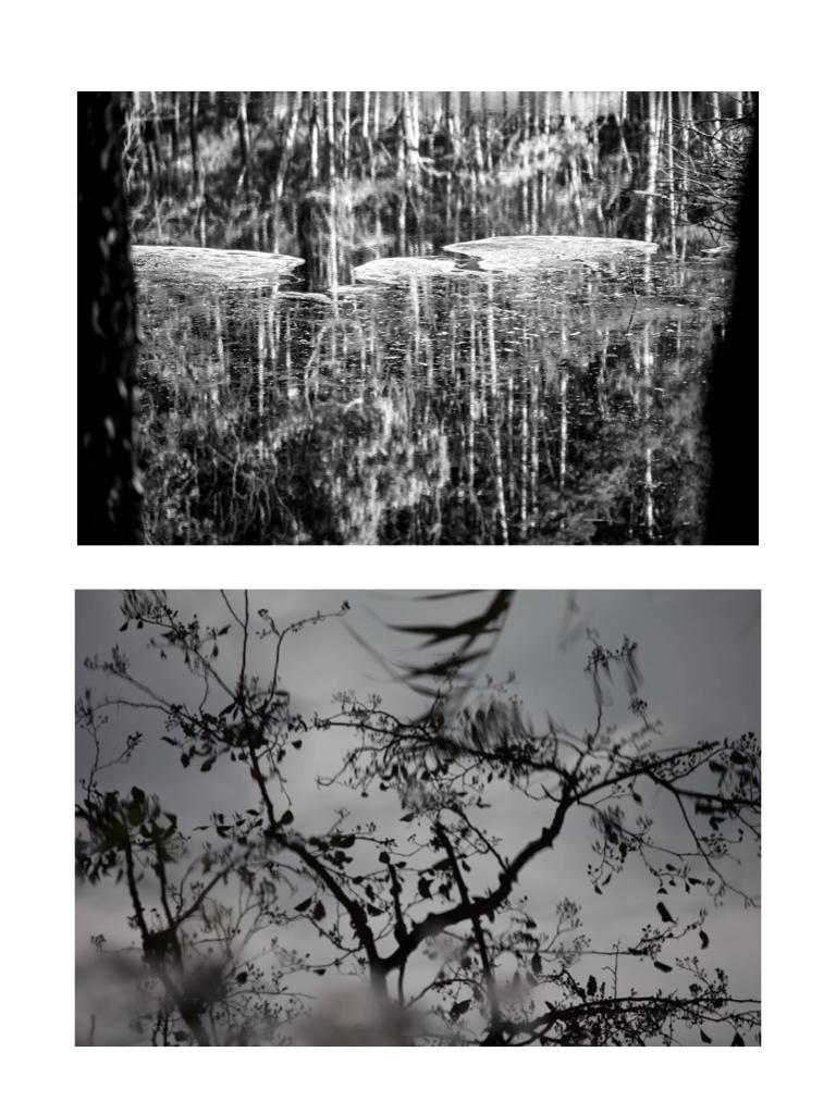 Landscape, 100x80cm, Hahnemühle Photorag, 2018, 2015