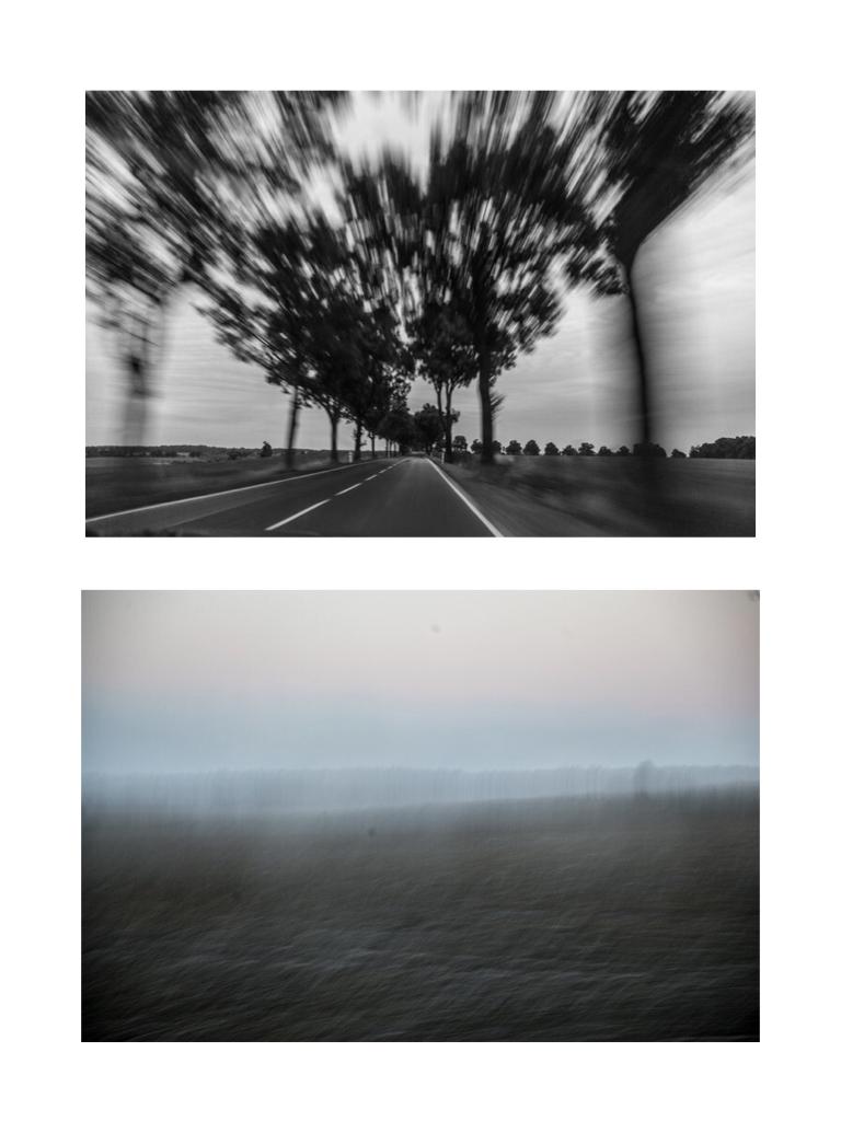 Landscape, 100x80cm, Hahnemühle Photorag, 2017, 2015