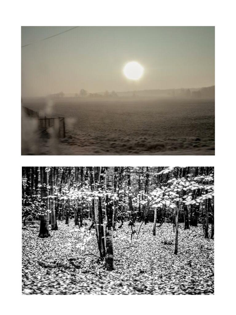 Landscape, 100x80cm, Hahnemühle Photorag, 2016, 2015