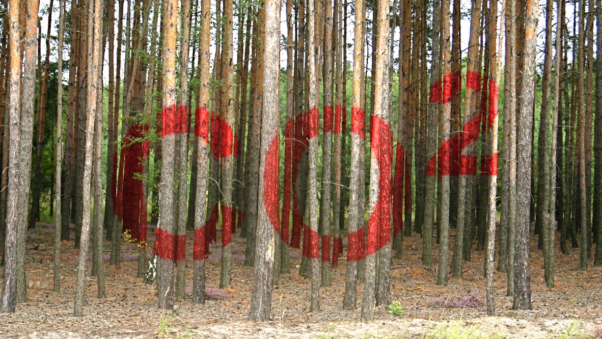 """""""CO2"""", temporary installation, red lacquer on pine trunks, 50x 60x 100 m, transNATURALE 2007, landscape park Bärwalder See, Germany"""
