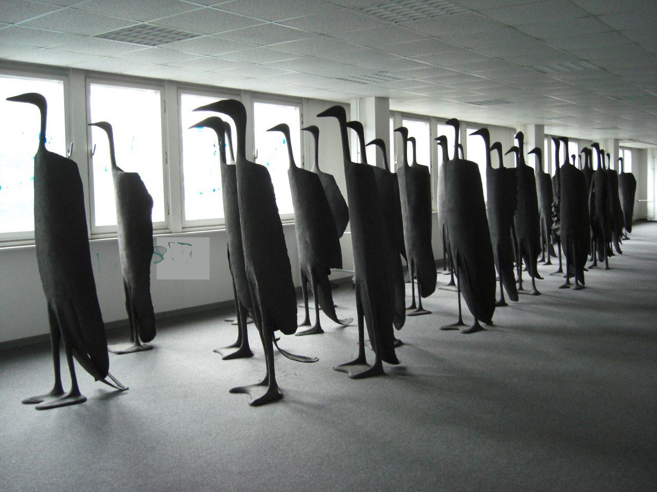 30 große Vögel in einer Ausstellung