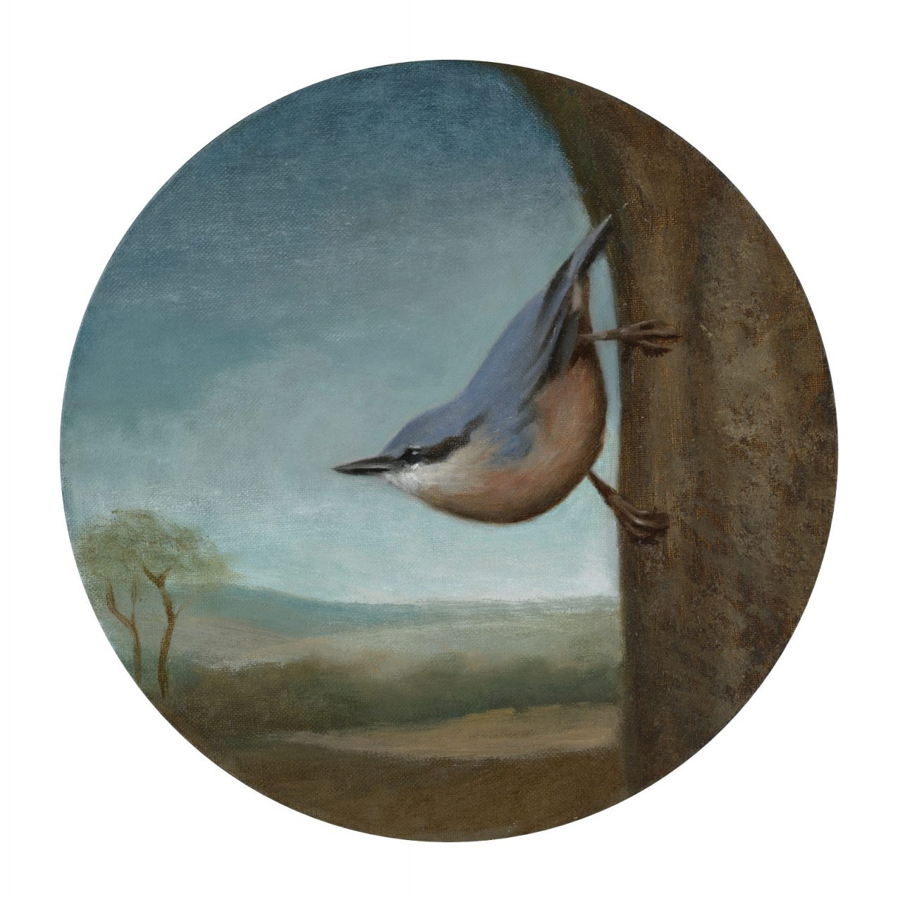 Nuthatch, Oil on Canvas, Diameter 25 cm, 2018