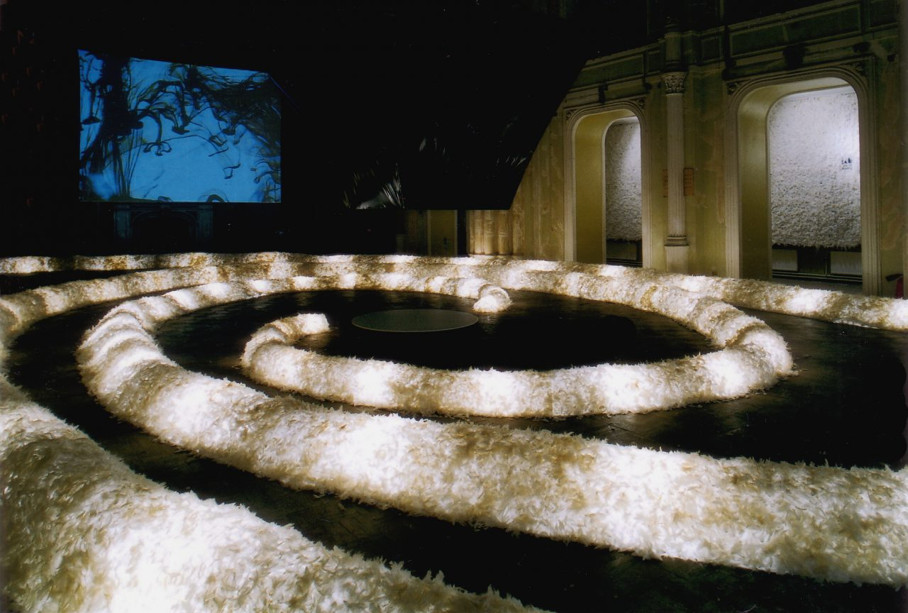 ORGANIC WAY. PENGUIN SPIRAL by Alexei Kostroma at Ludwig Museum in State Russian Museum, St. Petersburg, 1999 / Interactive installation: 700 sq.m, feathers, video, wall-painting