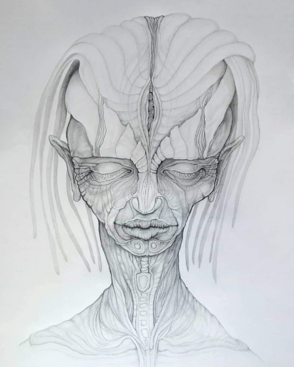 2019, 70 x 50 cm, pencil drawing