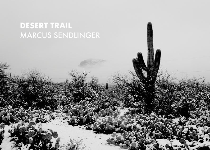 Marcus Sendlinger   Profil Image 5