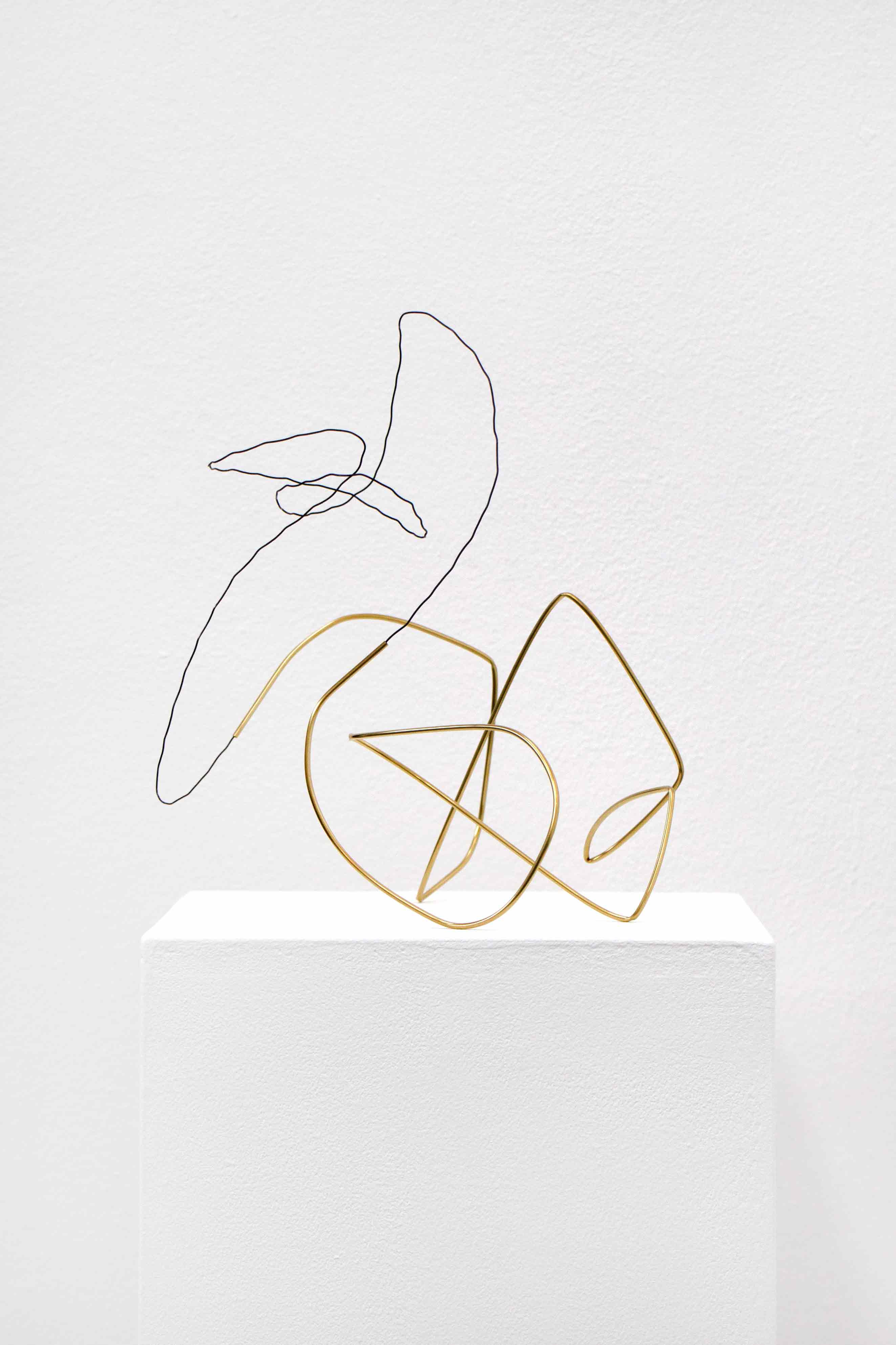 Spacedrawings_010, 2020, brass, iron wire
