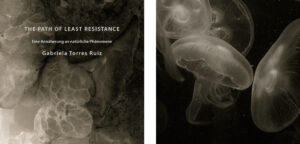 THE PATH OF LEAST RESISTANCE Image