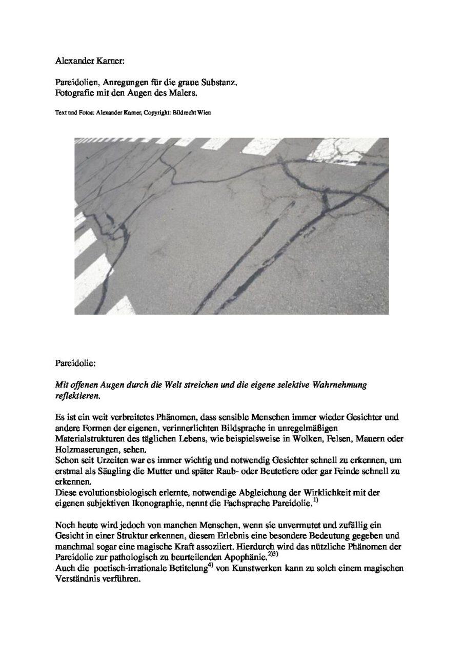 """my new concept, entitled """"Pareidolien, Anregungen für die graue Substanz. Fotografie mit den Augen des Malers"""""""