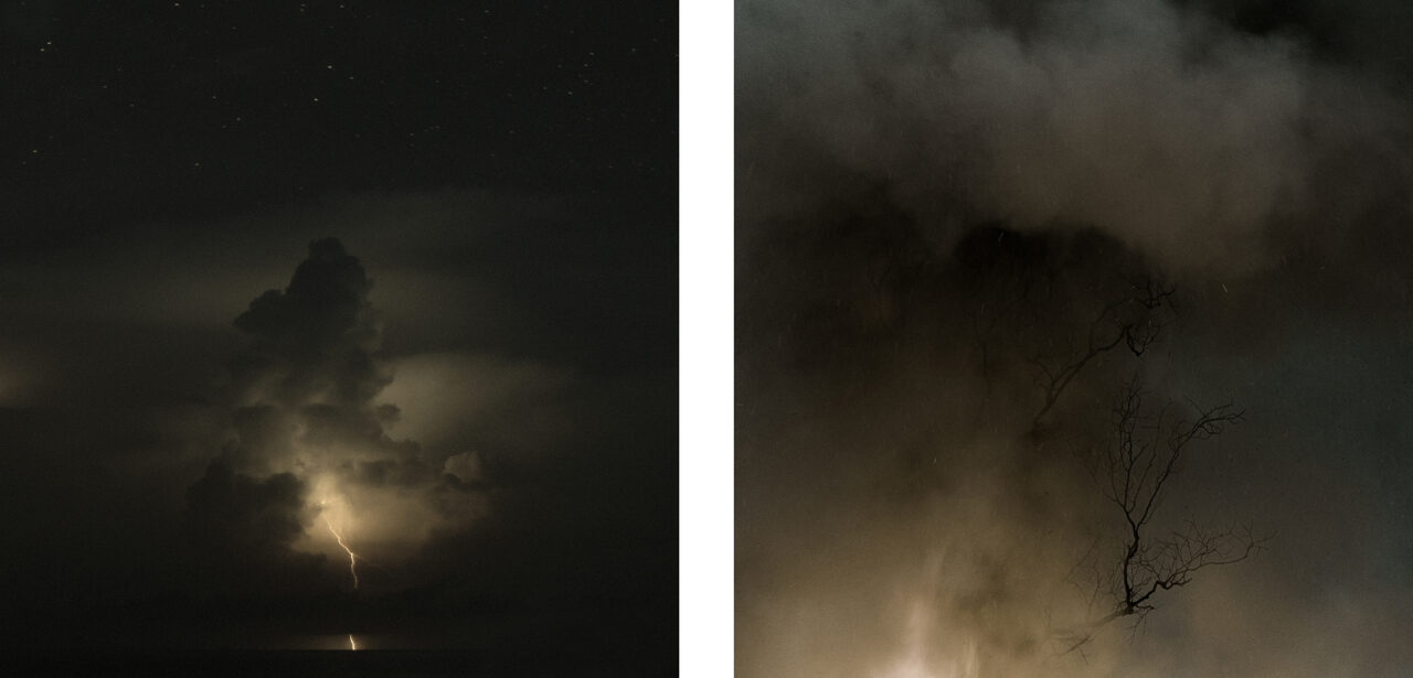 #1 from the series Mimesis (diptych)