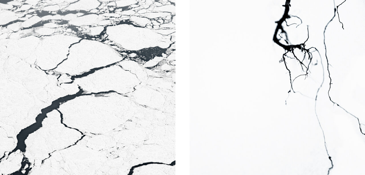 #32 from the series Mimesis (diptych)