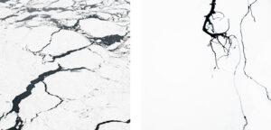 Mimesis #32 | Gabriela Torres Ruiz | available artwork